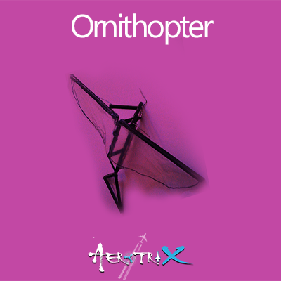 Ornithopter Workshop Aeromodelling at AerotriX Centre, Bangalore Workshop