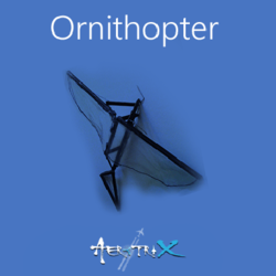Ornithopter Workshop Aeromodelling at Sastra SRC