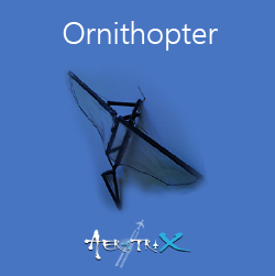 Ornithopter Workshop Aeromodelling at Sastra SRC
